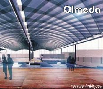 Palencia. 'La Olmeda' afronta el cambio más radical en sus 1.700 años de vida