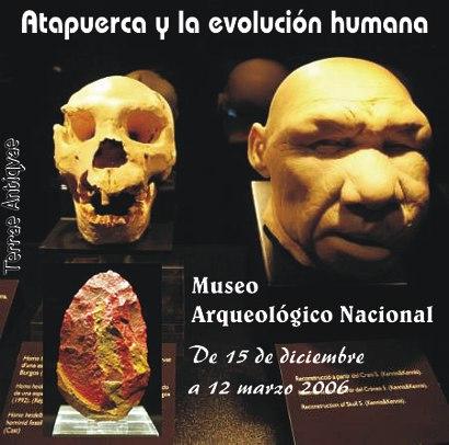 Expuesto un cráneo de Atapuerca de 400.000 años, único en el mundo