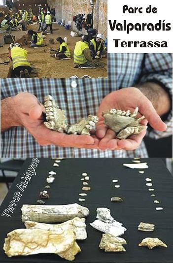 Hallan en un yacimiento de Tarrasa utensilios humanos de casi un millón de años de antigüedad en unas obras de tren