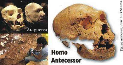 El 'Homo antecessor' de Atapuerca podría no ser el antecesor común de neandertales y humanos actuales