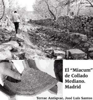 """Madrid completa el camino a Roma. El """"Miacum"""" de Collado Mediano"""