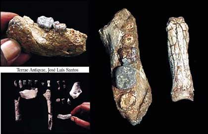Etiopía. Se encontraron los fragmentos de por lo menos nueve homínidos primitivos de entre 4,5 y 4,3 millones de años de antigüedad