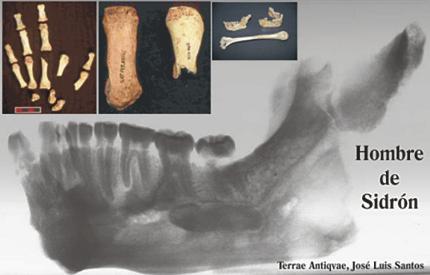 Científicos españoles descifran por primera vez el ADN de los neandertales ibéricos