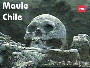 Chile. Hallan milenario cementerio indígena en la Séptima región