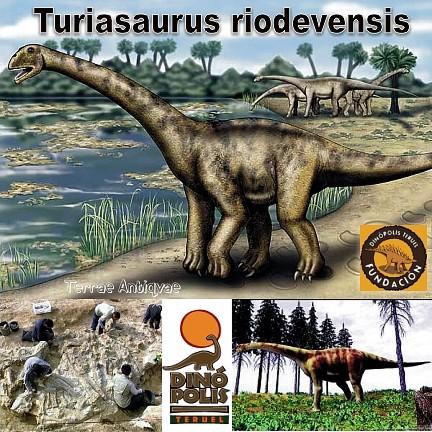 Turiasaurus Riodevensis 00 TA