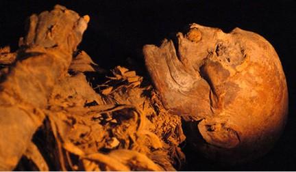 Hatshepsut XVIII din. 008 TA