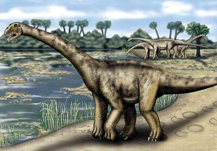 Turiasaurus Riodevensis 08
