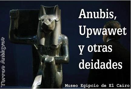 Anubis expo ta