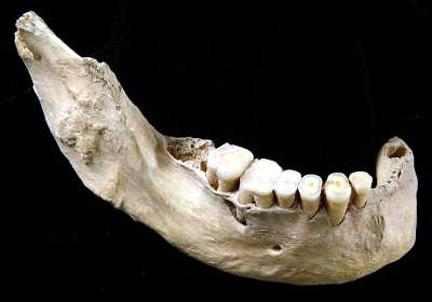 Mandíbula china 40000 años antigüedad
