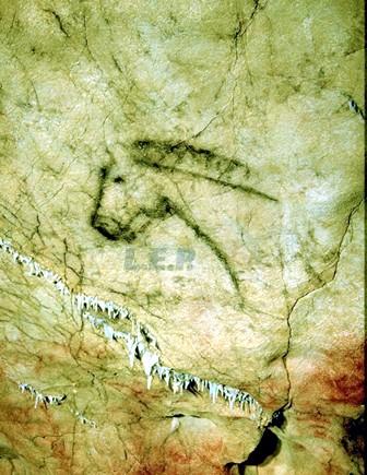 Cueva Tito Bustillo Ribadesella Asturias 3
