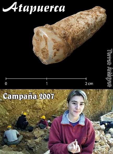 Atapuerca diente campaña verano 2007
