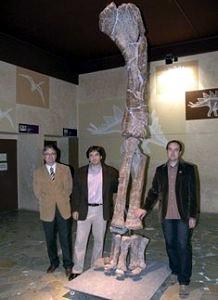 Turiasaurus Riodevensis 05