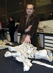 Turiasaurus Riodevensis 06