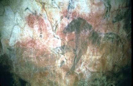 Cueva Tito Bustillo Ribadesella Asturias 6