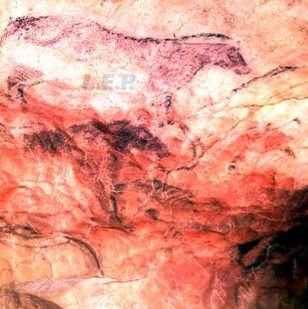 Cueva Tito Bustillo Ribadesella Asturias 2