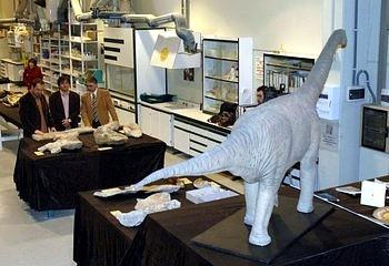 Turiasaurus Riodevensis 07