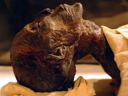 Hatshepsut XVIII din. 012 TA