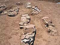 Valencia. Arqueólogos hallan en Gandia una necrópolis visigoda con 200 esqueletos y una villa romana