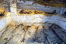 Una misión arqueológica egipcia descubre 20 momias cubiertas de oro